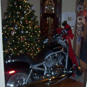 Wifes Christmas Present - Black '02 V-Rod