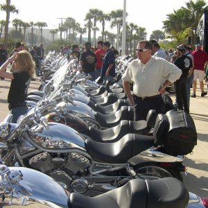 Row of V-Rods at Daytona