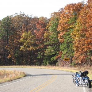 Fall Foliage in the Ozarks