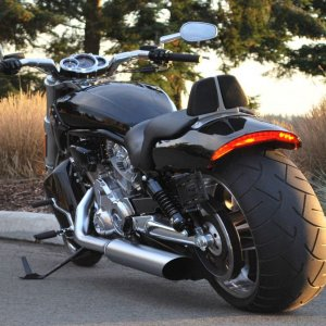 2009 V Rod Muscle